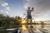 stand up paddling at sunset