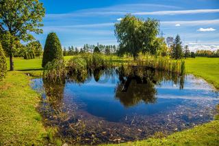 Adorable oval pond