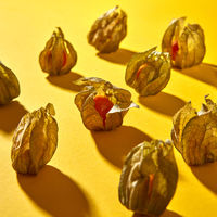 Diagonally symmetrical rows of a pattern with yellow physalis fruit with shadows on a yellow background.