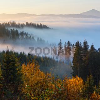 Autumn misty Carpathians, Ukraine.
