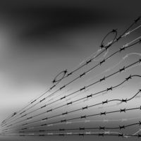 Barbed Wire Fence on Blurred Grey Background. Stylized Prison Concept. Symbol of Not Freedom