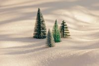 Small artificial trees on sparkling snow, sunny day