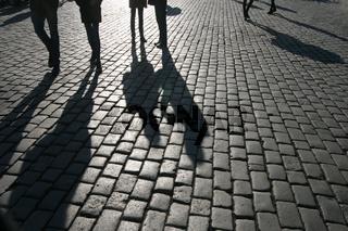 Schatten auf Straßenpflaster