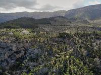 Aerial photo Son Marroig countryside winding country road, Palma de Mallorca, Balearic Islands, Spain