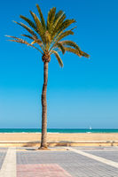 Malvarrosa beach, Valencia, Spain
