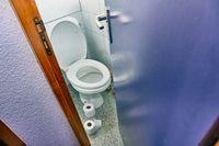 Toilet door opening