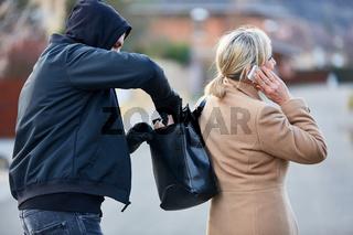 Dieb klaut Frau Brieftasche aus Handtasche