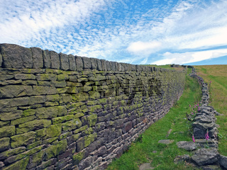 a perspective view along a large moss covered dry stone wall separating grass meadows in yorkshire dales countryside between colden and heptonstall in calderdale with white clouds