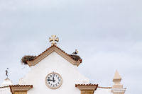 Storks nest in Olhao