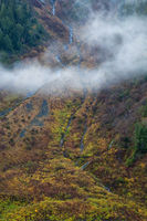 A mountain side covered in colorful autumn trees and shrubs