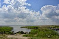 baltic rear water