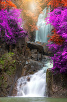 Tropical Waterfall Autumn