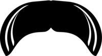 Walrus Moustache Icon Vector