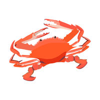 Red cooked crab icon isolated on white background, fresh seafood, healthy tasty food, vector illustration.
