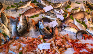 Seafood at La Pescheria fish market in Catania, Sicily, Italy