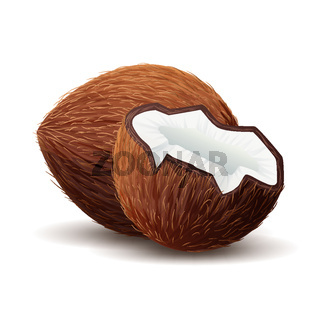 Coconut icon, broken coconut isolated in white