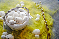Easter white dotted Eggs in the nest and spring yellow grass