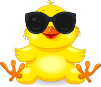Little yellow chick in black glasses