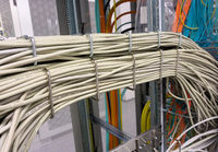 Network switch and network cable in a data center
