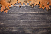 Autumn Oak Leaves And Acorns On Wooden Table