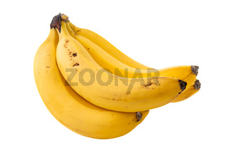Sweet bananas isolated on white
