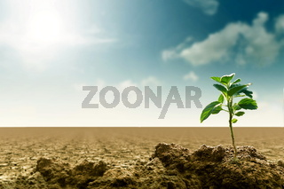 Sustainability and global warming Concept