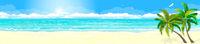 Tropics sand beach ocean