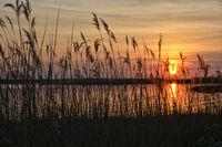 Rear Water Sunset
