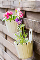 Detail of hanging flower pots on fence