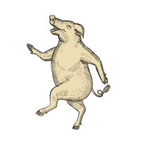 Jolly Pig Dancing Drawing Retro Color