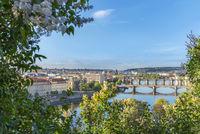 Vltava river with its bridges and Prague City