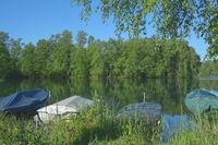 Lake Venekotensee in Maas-Schwalm-Nette Nature reserve,North Rhine westphalia,Germany