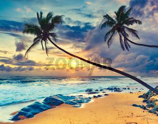 Sunset over the sea. Amazing landscape