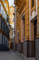 Narrow street in the Santa Cruz district, Seville, Andalusia, Spain, Europe
