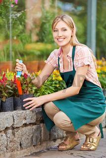 Frau beim Umtopfen bei der Gartenarbeit