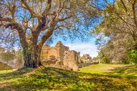 Italian countryside ancient ruins tree branches on sunny day in Tivoli