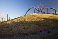 DU_Tiger and Turtle_61.tif