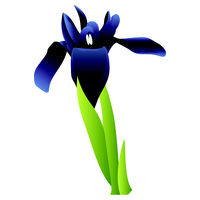 Vector illustration  of blue iris flower with green leafs on white background.