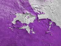 Violet wall with the peeled-off paint