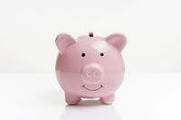 piggy or coin bank or piggybank or money box