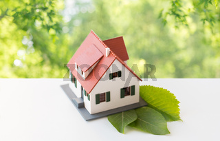 close up of house model and green leaves