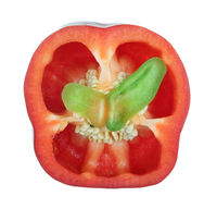 The cross section of the sweet red paprika pepper with green batterfly wings inside isolated macro