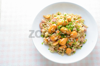 Smoked Sausage Fried Rice, a quick fried rice for simple, yet immensely satisfying meal on a cold day.