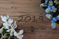 Crocus And Hyacinth, Text 2019, Rustic Wooden Background