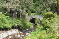 Park landscape at Blair Castle in Scotland