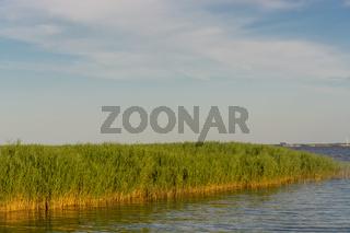 Boddenlandschaft on Fischland
