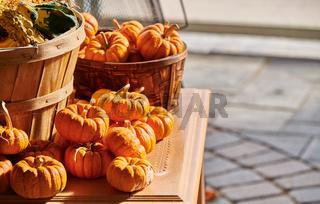 Fresh pumpkins on farm market still life