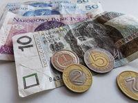 PLN Banknote, Zlotych Macro Shot