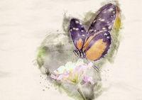 Watercolor Heliconius Doris Butterfly