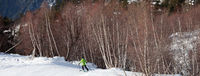 Skier descent on snowy ski slope in forest at sun day
